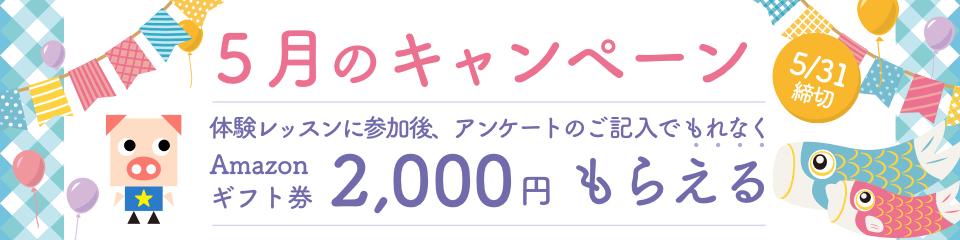 5月のキャンペーン